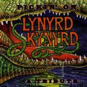 Pickin' On Lynyrd Skynyrd by Pickin' On