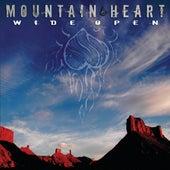 Wide Open by Mountain Heart