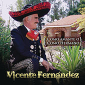 Como Amante o Como Hermano by Vicente Fernández