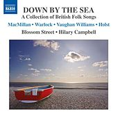 Down By the Sea by Blossom Street