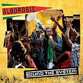 Sound The System by Alborosie