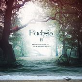 Fuchsia II : From Psychedelia to a Distant Place by Fuchsia