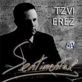 Sentimental by Tzvi Erez