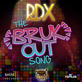 The Bruk Out Song - Single by RDX