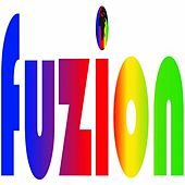 Increased Costs by Fuzion
