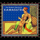 The Modern Electronic Kamasutra by Stephan Kaske