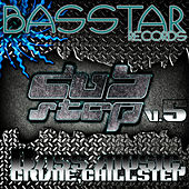 Bass Star Records Dub Step Bass Music Grime Chillstep EP's V.5 by Various Artists