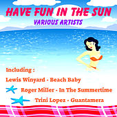 Have Fun In The Sun by Various Artists