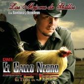 Las Mejores De Gallos, Con Tambora Y Acordeon by El Gallo Negro