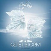Quiet Storm by Aly & Fila