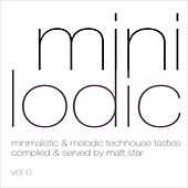 Minilodic vol. 6 by Various Artists
