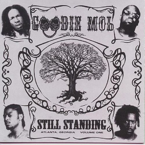Still Standing by Goodie Mob