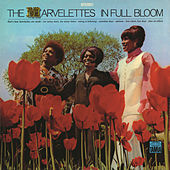 In Full Bloom by The Marvelettes