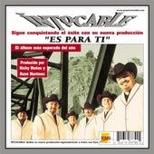 Es Para Ti by Intocable