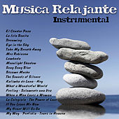 Música Relajante - Instrumental by Various Artists