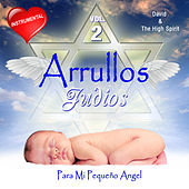 Arrullos Judios, Vol. 2 (Para Mi Pequeno Angel) by David & The High Spirit