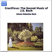 Crucifixus: The Sacred Music of J.S. Bach by Various Artists