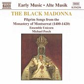 Black Madonna by Belinda Sykes