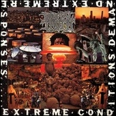 Extreme Conditions Demand Extreme Responses by Brutal Truth