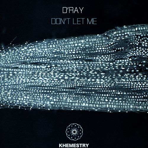 Don't Let Me by D-Ray