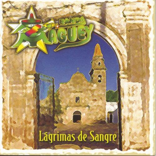 Lagrimas De Sangre by Banda Maguey