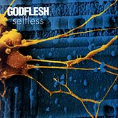 Xynobis by Godflesh