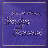 In a Word by Fudge Tunnel