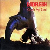 Crush My Soul by Godflesh