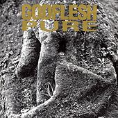 Pure by Godflesh