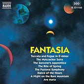 Fantasia by Various Artists
