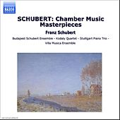 SCHUBERT: Chamber Music Masterpieces by Various Artists