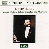 STRAUSS JR : Famous Waltzes / Polkas / Marches and Overtu by Various Artists