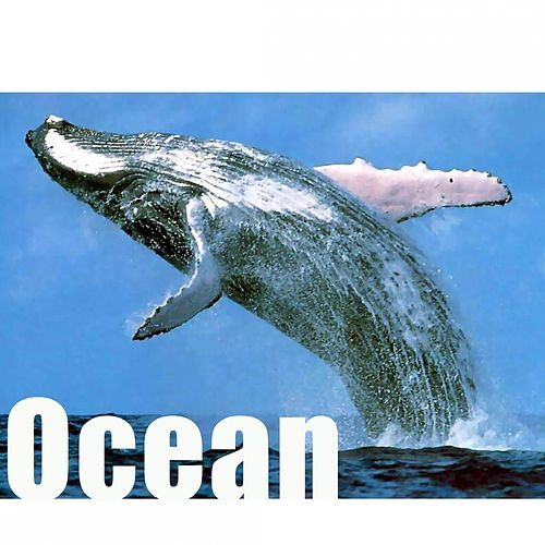 Ocean by Hollywood Pictures Orchestra