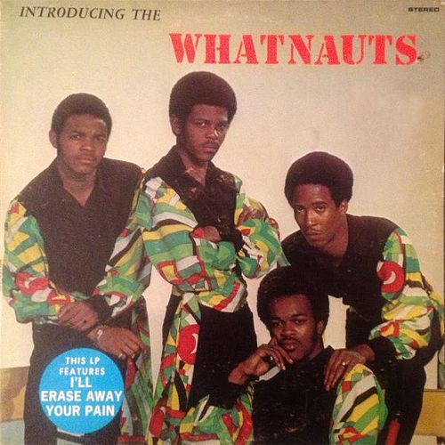 Introducing the Whatnauts by The Whatnauts