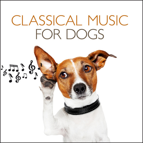 Classical Music For Dogs by Various Artists