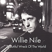 Beautiful Wreck Of The World by Willie Nile