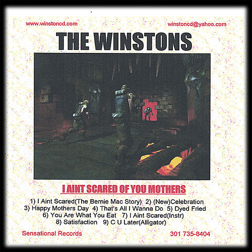 I Aint Scared Of You Mothers by The Winstons