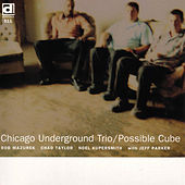 Possible Cube by Chicago Underground Duo