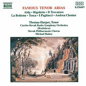 Famous Tenor Arias by Various Artists