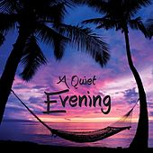 A Quiet Evening by Various Artists