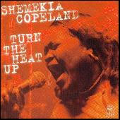 Turn The Heat Up by Shemekia Copeland
