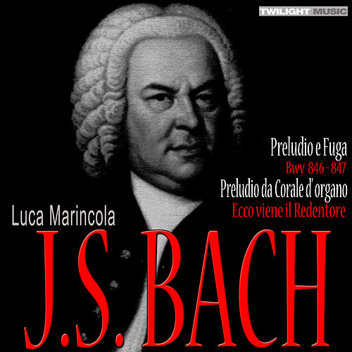 J.S. Bach by Luca Marincola