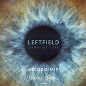 Song of Life (Betoko Mix) by Leftfield