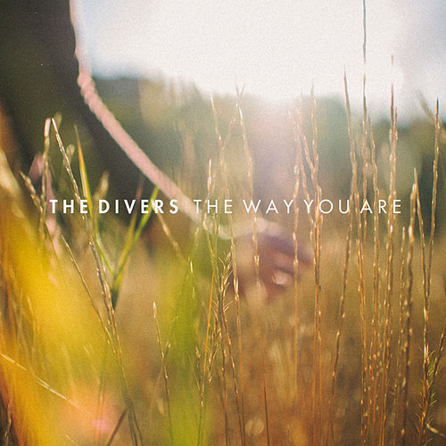 The Way You Are by Divers