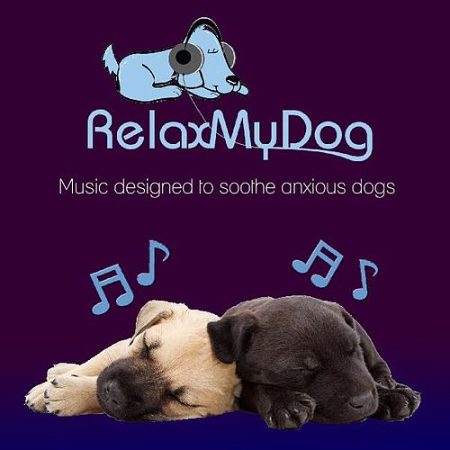 Pet Relaxation - Music to Relax Dogs and Encourage Sleep - Fight Against Separation Anxiety by Relaxmydog