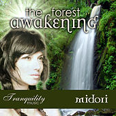 The Forest Awakening by Midori