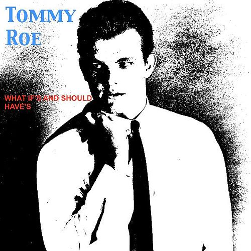 What If's and Should Have's by Tommy Roe