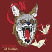 Tawk Tomahawk by Hiatus Kaiyote