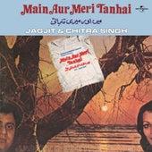 Main Aur Meri Tanhai by Various Artists