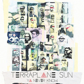 Ya Never Know by Terraplane Sun